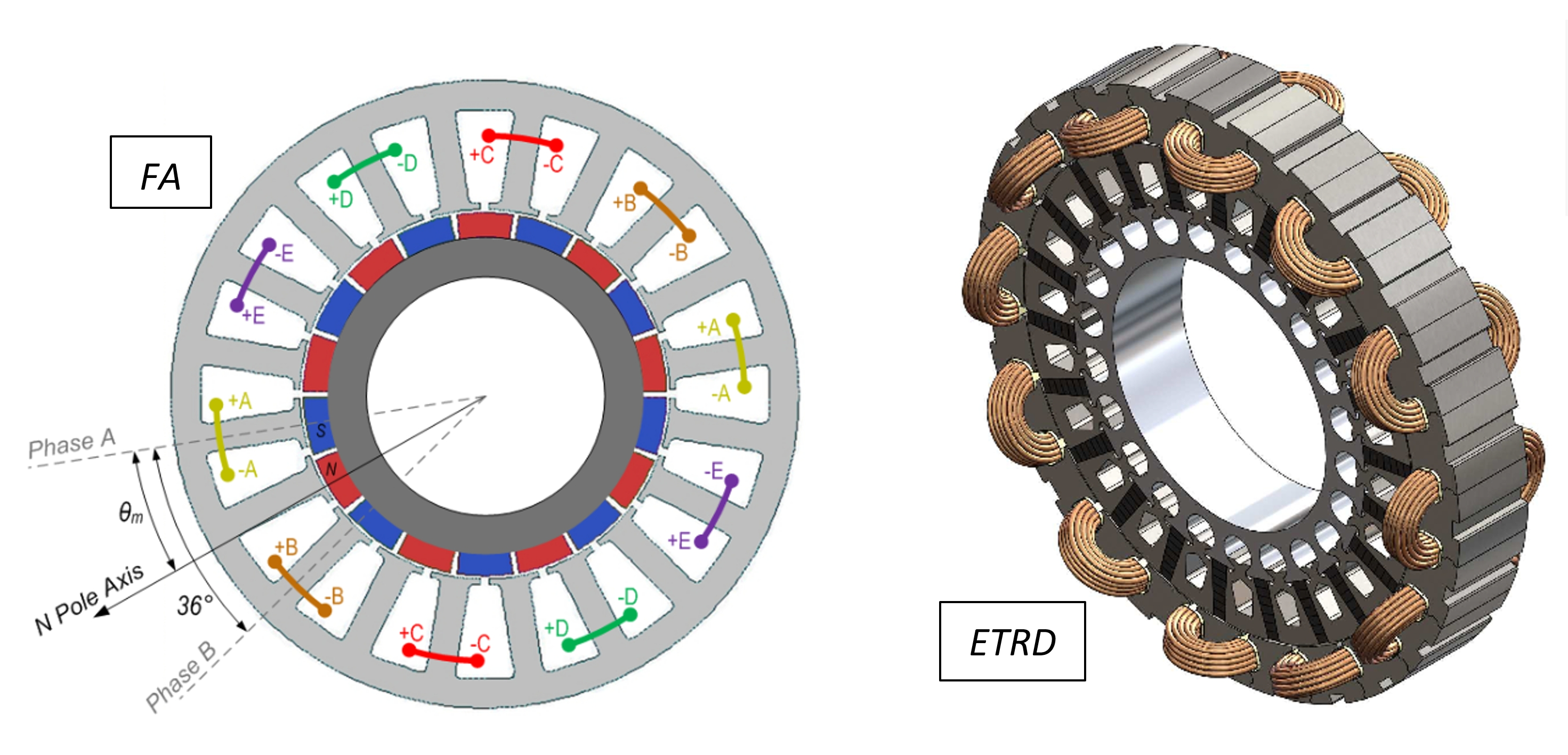Fault-tolerant motors for flap application (FA) and tail rotor drive (ETRD)